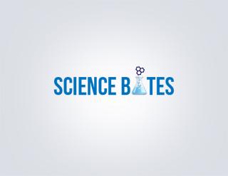 logo design company - webacer software