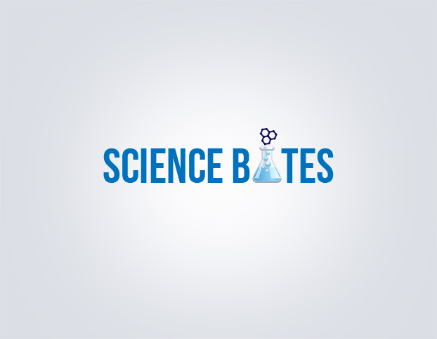 logo design company - webacer software